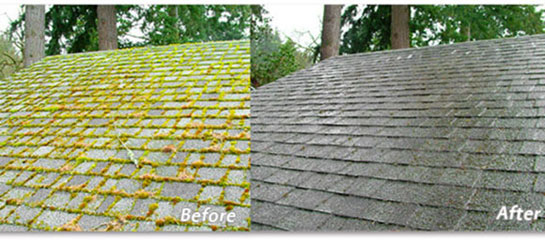 before and after example of roof taken care of by Gruwell Roofing Roof Maintenance Service Plan